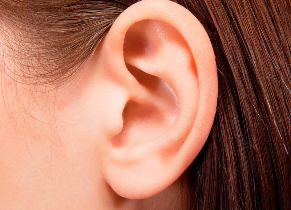 Признаки сломанного уха фото у детей