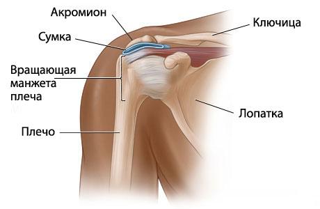 Перелом плеча у пожилых людей: симптомы, лечение