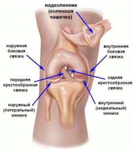травмы коленного сустава и их лечение